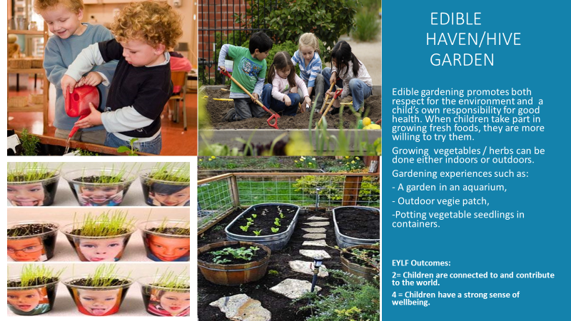 gardening-in-early-childhood-education